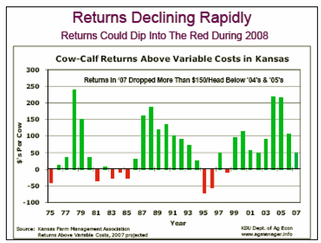 Returns Declining Rapidly Returns Could Dip Into the Red During 2008