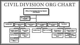 Civil Division Organization Chart