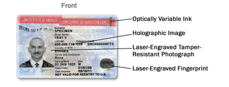 Employment Authorization Documents Card