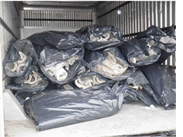 Plastic bags filled with asbestos