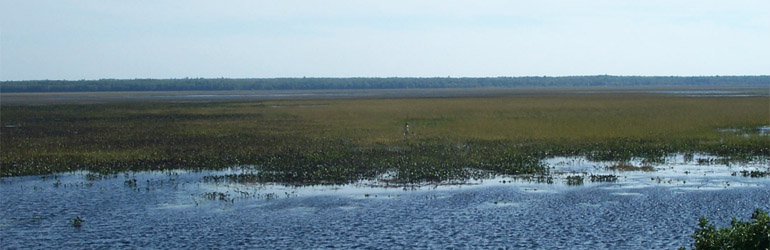 Rice Lake National Wildlife Refuge, McGregor, MN. Courtesy of FWS.