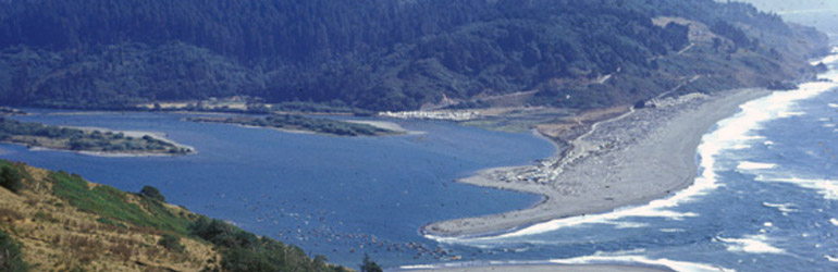The Klamath River Overlook reveals an estuary for salmon, seals, sea lions, sea birds, and whales. Courtesy of NPS.