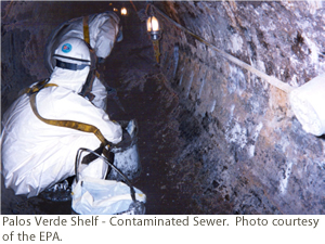 Palos Verde Shelf - Contaminated Sewer.  Photo courtesy of the EPA.