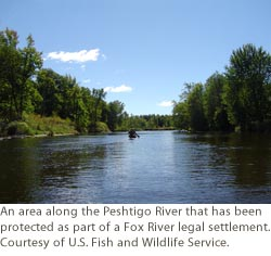 An area along the Peshtigo River that has been protected as part of a Fox River legal settlement.  Courtesy of U.S. Fish and Wildlife Service.