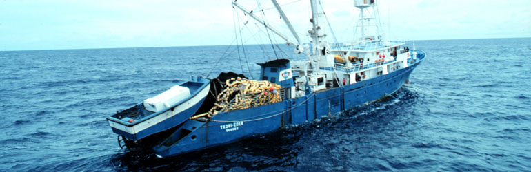 The Spanish tuna purse seiner F/V TXORI-EDER in the western Indian Ocean. Smaller vessel on the stern is secured to purse seine and when a school of tuna is encountered, the small boat is launched and it helps ship encircle it. Courtesy of Jose Cort/NOAA.
