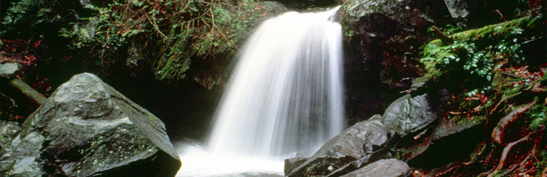 Water fall in the Great Smokie Mountains.  Courtesy of NPS.