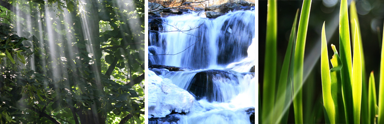 Collage of nature pictures including sun light coming from tree braches, a waterfall, and freshly cut grass.