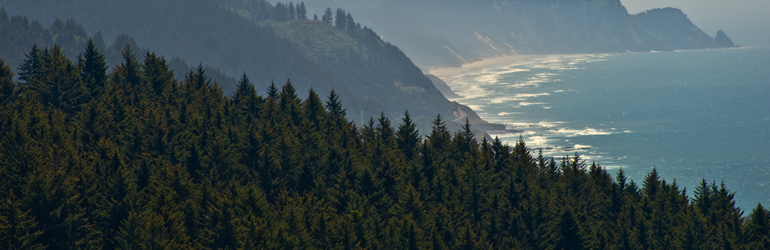 A scenic view of the Oregon coastline where mountains end where the ocean begins.  Courtesy of Jeff Bank (DOJ/ENRD)