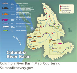 Columbia River Basin Map. Courtesy of SalmonRecovery.gov