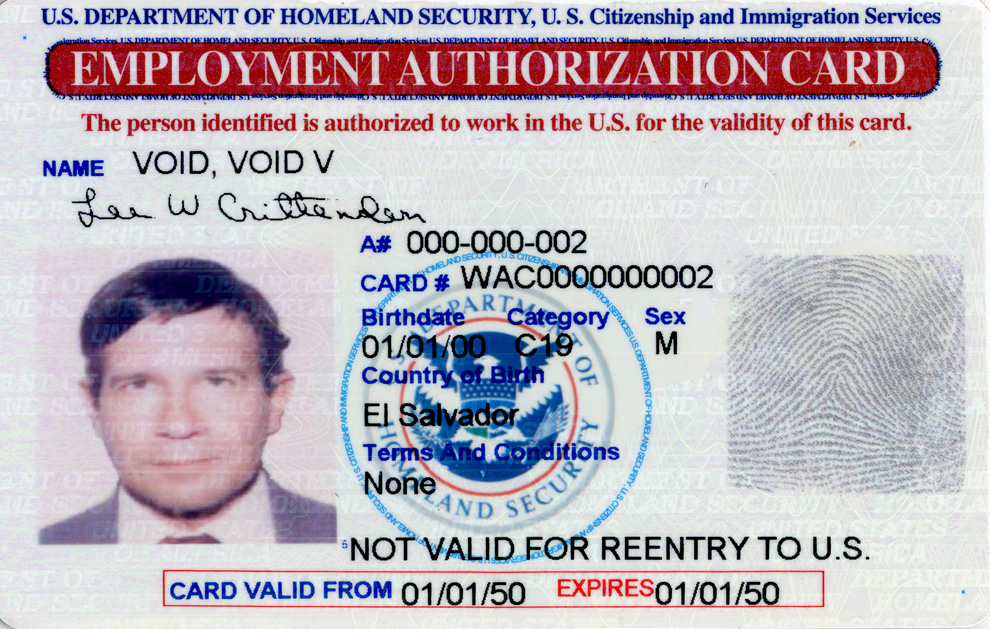 Example of Employment Authorization Card