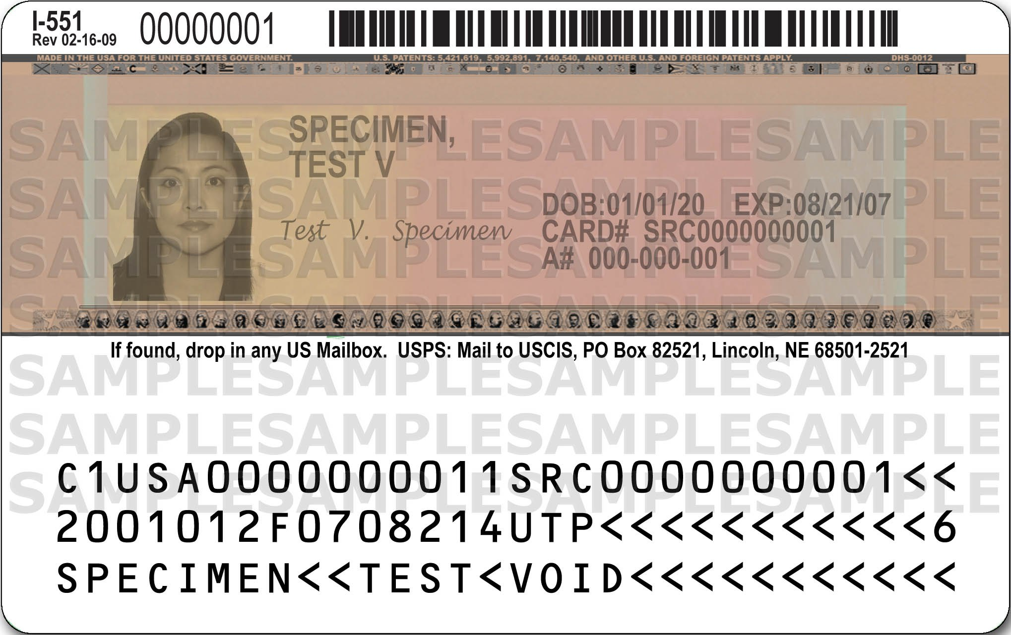 Example of Alien Registration Receipt Card