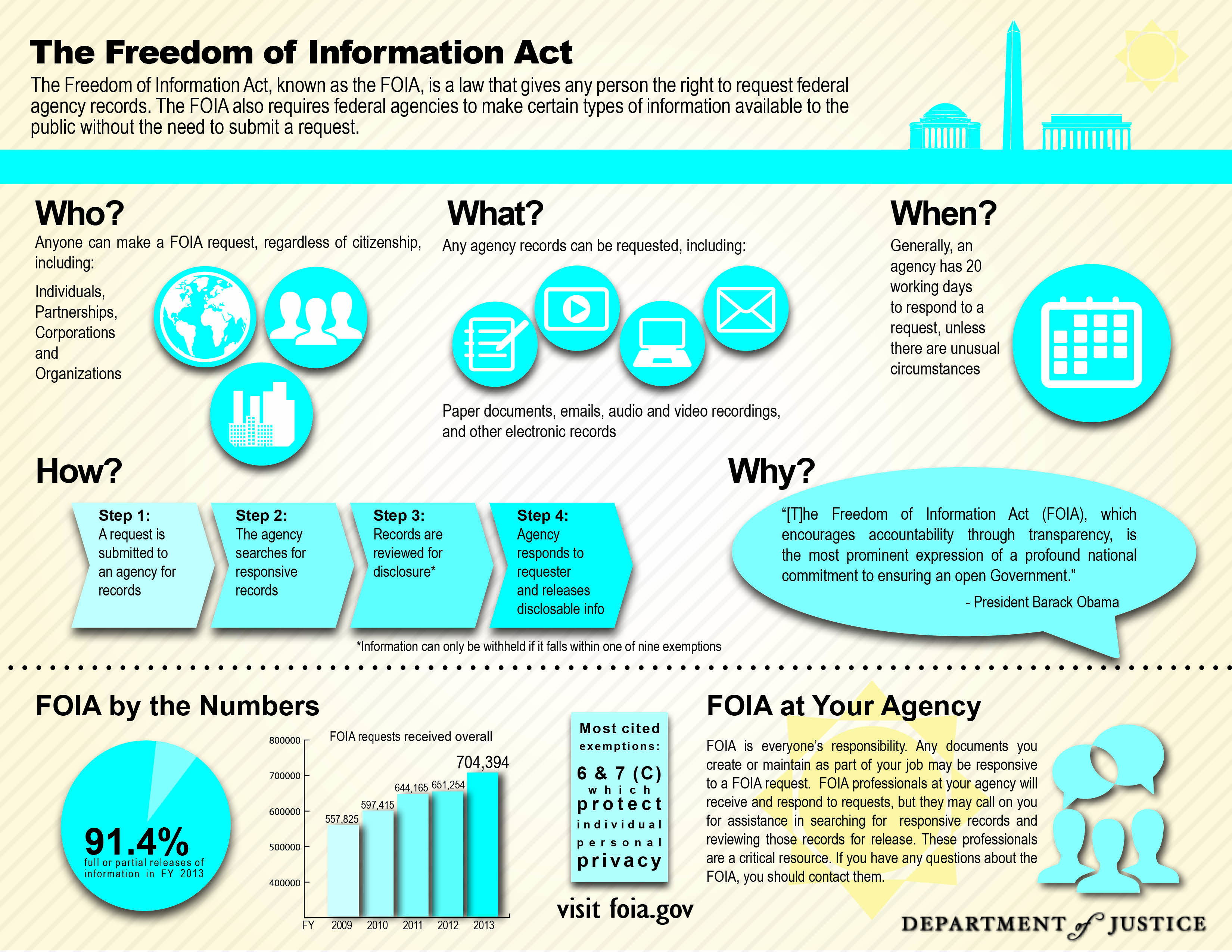 FOIA Infographic