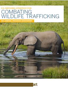 Combating Wildlife Trafficking Report