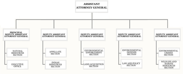 Organization Chart for the U.S. Department of Justice Environment and Natural Resources Division