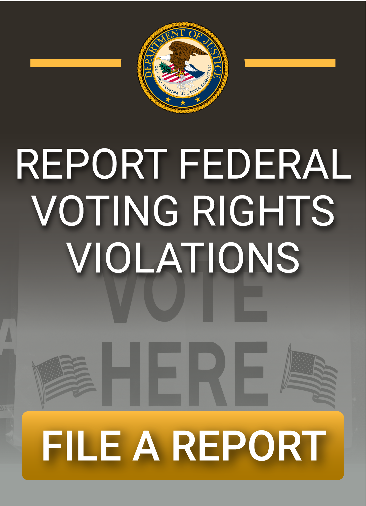 Report Federal Voting Rights Violations: File a Report