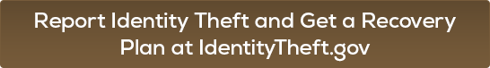 Report Identity Theft and Get a Recovery Plan at IdentityTheft.gov