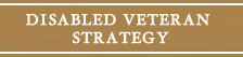 Disabled Veteran Strategy
