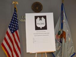 Gun Pledge