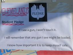 Pledge Against Gun Violence