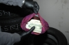U.S. Currency seized in Portillo case