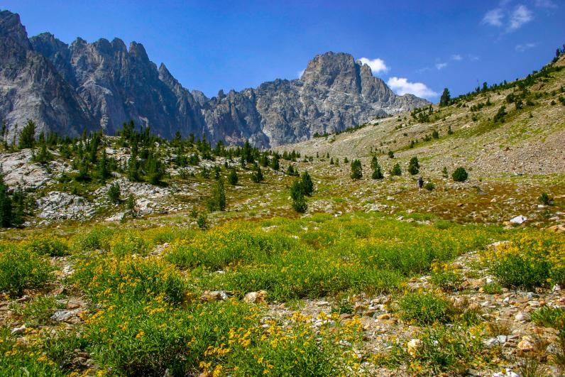 Idaho mountain in the spring