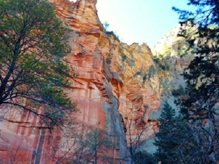 Oak Creek Canyon, Sedona (Nov. 2013)