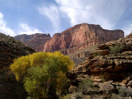 Grand Canyon's Bright Angel Trail near the river (Oct. 2013)