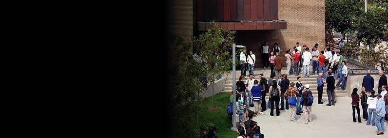 Campus Sexual Assault Blog