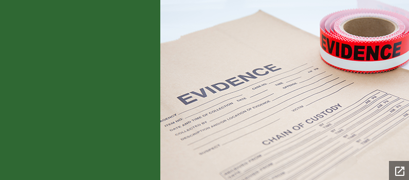 Collecting Evidence in Physical Abuse and Neglect Cases