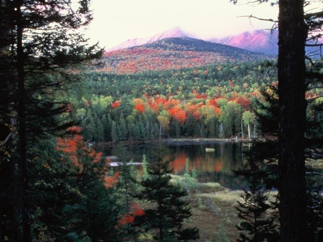 Maine Fall