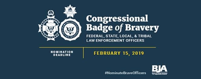 Law Enforcement Congressional Badge of Bravery