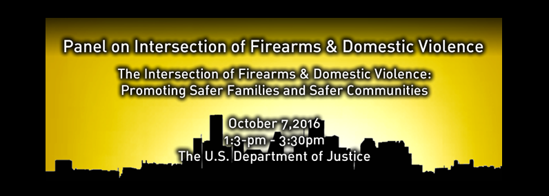 Panel on Intersection of Firearms & Domestic Violence The Intersection of Firearms & Domestic Violence:Promoting Safer Families and Safer Communities