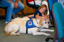 Therapy dog with child