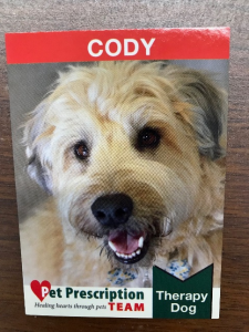 Cody - Therapy Dog