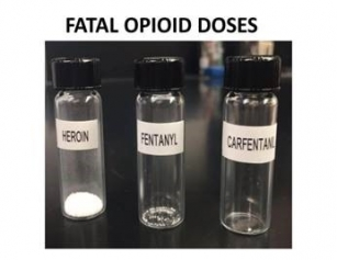 Fatal Opioid Doses