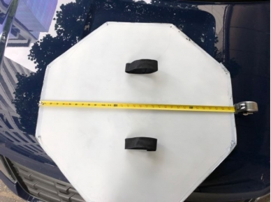 Shield (Back)