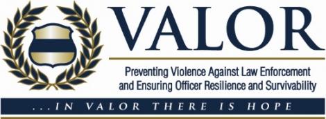 Valor Banner