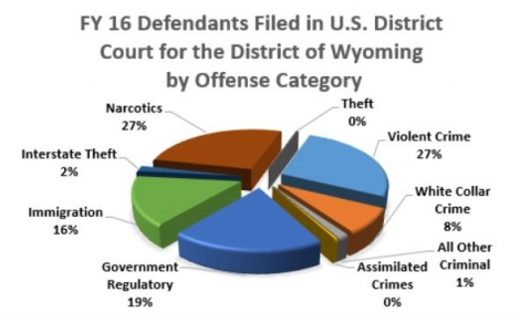 Fiscal Year 2016 Criminal Defendants
