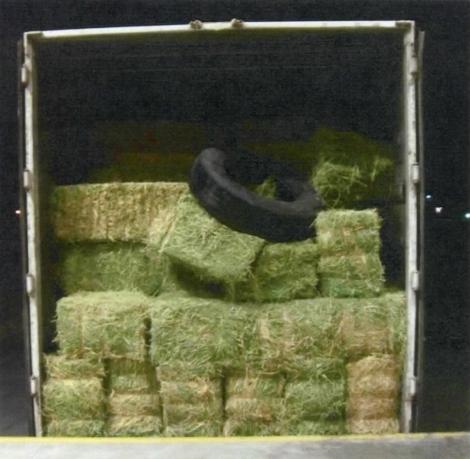 Hay bales inside a cargo trailer