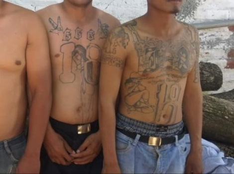 Members of the 18th Street gang are arrested in Operation Regional Shield.