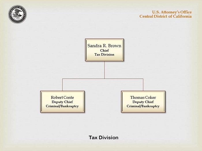 Organizational Chart for the Tax Division