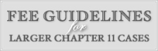 Fee Guidelines for Larger Chapter II Cases