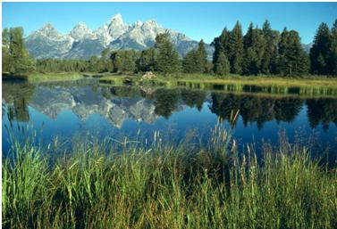 Schwabachers Landing & Teton Mountains, Photo Courtesy of the National Park Service