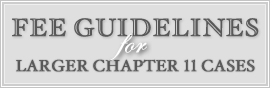 Fee Guidelines for Larger Chapter 11 Cases